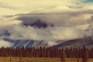 Landscapes on Denali Highway, Alaska. Instagram Filter. by Andrushko Galyna
