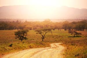 Namibian Landscape by Andrushko Galyna