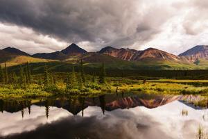 Serenity Lake in Tundra on Alaska by Andrushko Galyna