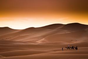 Desert Sahara Landscape by Andrzej Kubik