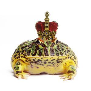 Frog Prince Wearing Crown by Andy and Clare Teare