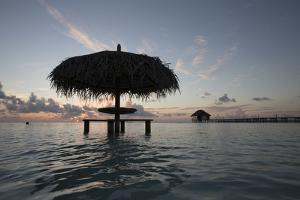 A Picnic Table with a Thatched Roof in the Ocean by Andy Bardon