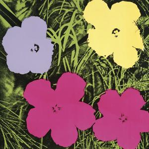 Flowers, c.1970 (1 purple, 1 yellow, 2 pink) by Andy Warhol