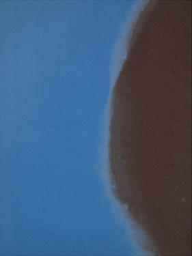 Shadows II, 1979 (blue) by Andy Warhol