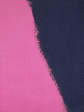 Shadows II, 1979 (pink) by Andy Warhol
