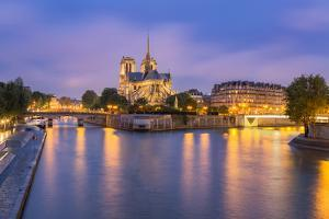 View of Notre Dame De Paris and its Flying Buttresses across the River Seine at Blue Hour, Paris by Aneesh Kothari