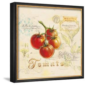 Tuscan Tomato by Angela Staehling