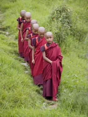 Buddhist Monks from Karchu Dratsang Monastery, Jankar, Bumthang, Bhutan by Angelo Cavalli