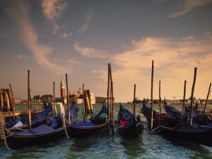 Gondolas, Venice, Italy by Angelo Cavalli