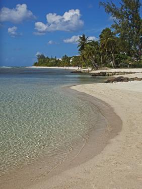 White Sand Beach, Bridgetown, Barbados, West Indies, Caribbean, Central America by Angelo Cavalli