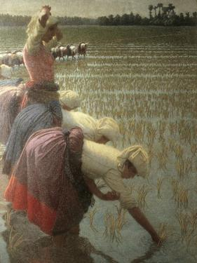Women Rice Harvesters in the Paddy Field by Angelo Morbelli