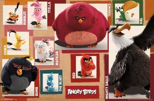 Angry Birds- Character Chart