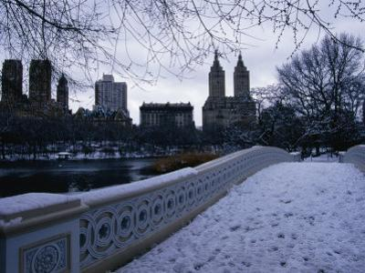 Central Park in Winter, New York City, New York, USA by Angus Oborn