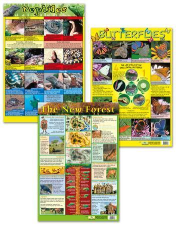 Animal Science Poster Set