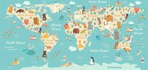 Animals World Map for Children, Kids. Animals Poster. Continent Animals, Sea Life. South America, E by Rimma Z