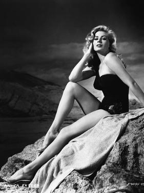 Anita Ekberg Hollywood sex symbol actress (b/w photo)