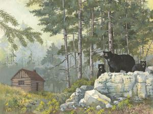 Bears Cabin by Anita Phillips