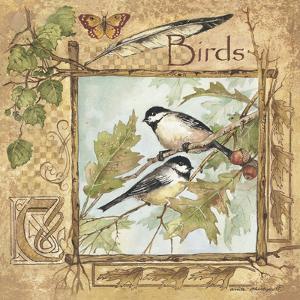 Birds by Anita Phillips