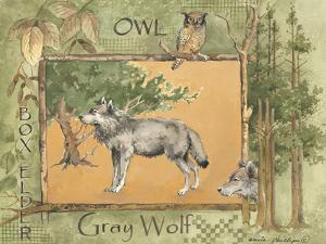 Gray Wolf by Anita Phillips