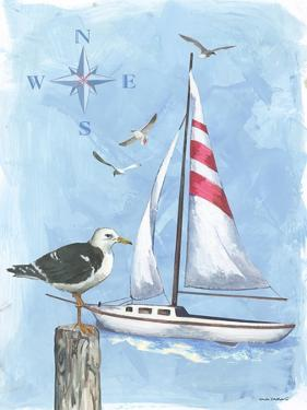 Sailboat by Anita Phillips