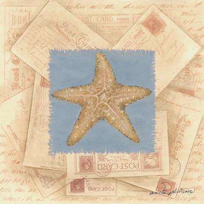 Starfish Postcard by Anita Phillips