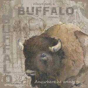 Where Does a Buffalo Roam by Anita Phillips