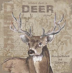Where Does a Deer Play by Anita Phillips