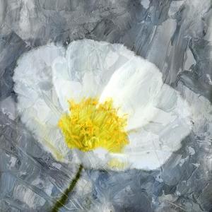 Poppy Blues 1 by Ann Bailey