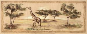 Safari Giraffe by Ann Brodhead