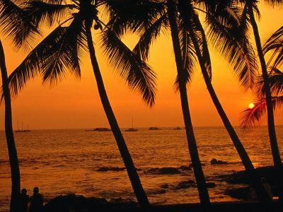 A Couple in Silhouette, Enjoying a Romantic Sunset Beneath the Palm Trees in Kailua-Kona, Hawaii