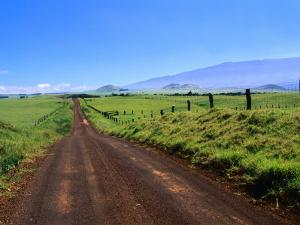 A View of Mauna Kea from the Road Leading Through Parker Ranch, Waimea, Hawaii, USA by Ann Cecil