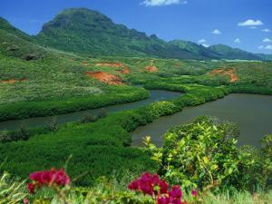 Overlooking a Verdant Green Valley with Hule'Ia Stream and Ancient Menehune Hawaiian Fishpond by Ann Cecil