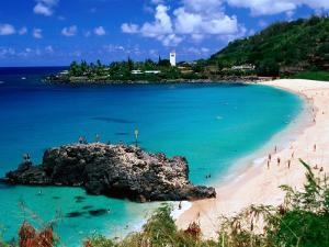 Overview of Waimea Bay on the North Shore, Waimea, U.S.A. by Ann Cecil