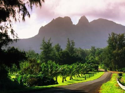 Road Through Lush Vegetation at Anahola with Mountain Backdrop by Ann Cecil