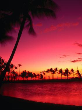 Sunset at Anaehoomalu Beach, Waikoloa, Hawaii, USA by Ann Cecil