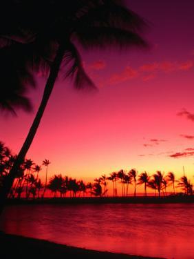 Sunset at Anaehoomalu on the Kohala Coast, Waikoloa, Hawaii (Big Island), Hawaii, USA by Ann Cecil