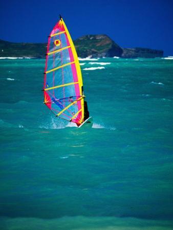 Windsurfer on the Shores of Kailua Beach, Kailua, U.S.A. by Ann Cecil