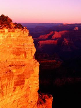 Yavapai Lookout, Grand Canyon National Park, U.S.A. by Ann Cecil