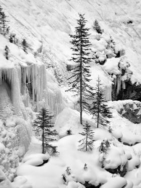 Canada, Alberta, Banff National Park. Frozen cascades in Johnston Canyon by Ann Collins