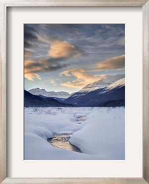 Canada, Alberta, Banff National Park, sunset at Graveyard Flats by Ann Collins