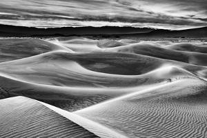 USA, California, Death Valley National Park, Dawn over Mesquite Flat Dunes in Black and White by Ann Collins