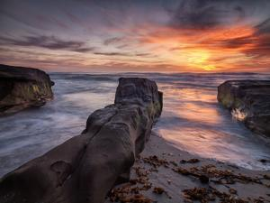 USA, California, La Jolla, Sunset, Coast Boulevard Park by Ann Collins
