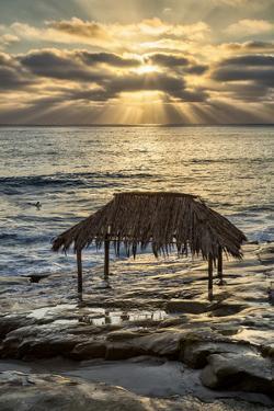 USA, California, La Jolla. Surf Shack at Windansea Beach by Ann Collins