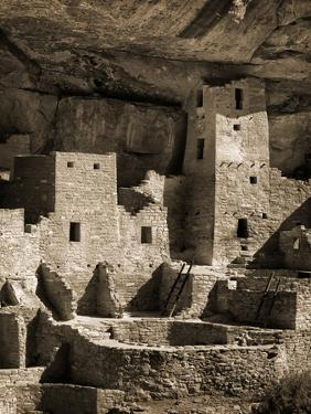USA, Colorado, Mesa Verde National Park. Cliff Palace Ruin, Tinted Monochrome by Ann Collins