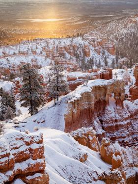 USA, Utah, Bryce Canyon National Park, Sunrise from Sunrise Point after Fresh Snowfall by Ann Collins