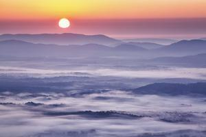 USA, Virginia, Rockfish Valley. Fog at sunrise along the Blue Ridge Parkway by Ann Collins