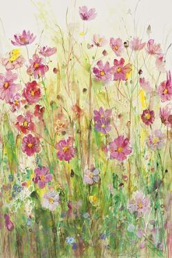 In The Meadow by Ann Oram