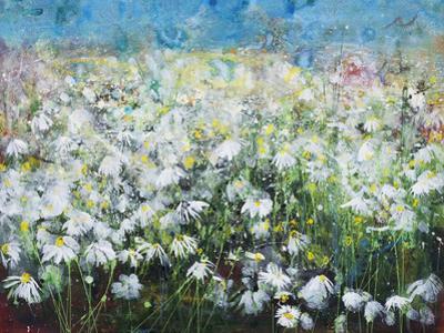 Meadow Haze