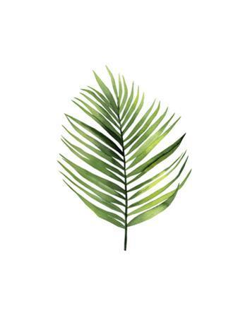 Palm Leaf I by Ann Solo
