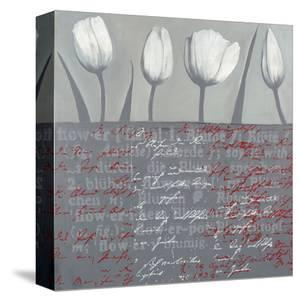 Tulips Parade in Grey by Anna Flores